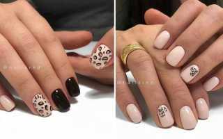 Леопардовый маникюр – лучший дизайн ногтей с хищным принтом
