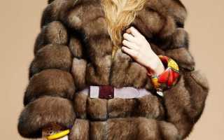 Все про мех соболя в моде и истории